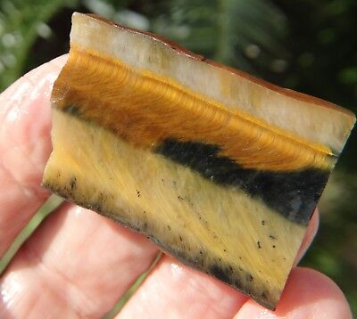 Natural Rough 130 ct  Multi Color Tiger Eye From South Africa