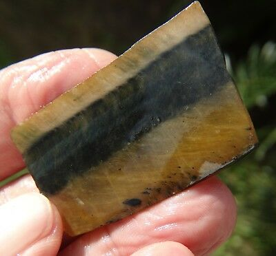 Natural Rough 85 ct South African Tiger Eye