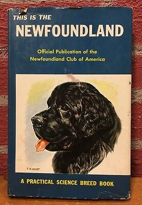 Vintage Dog Book - This Is The Newfoundland by Newfoundland Club of America
