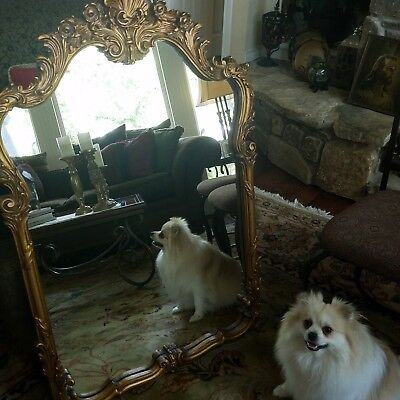 Large French / Victorian Mirror