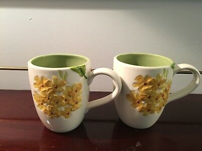 Studio Home Collection Garden Bouquet Cups/Mugs (2)