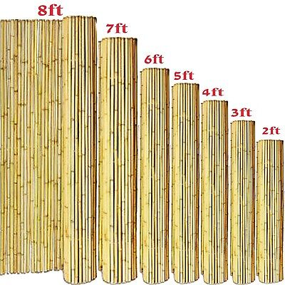 Bamboo Garden Canes Strong Heavy Duty Professional Garden Plant Support Sticks