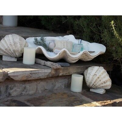 Large Clam Shell Tabletop Dresser Buffet Bowl Seashells Collection Display Decor