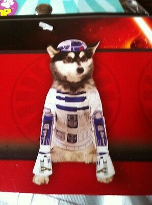 R2-D2 Fancy Dress ,DISNEY   Hundekostüm XS,Halloween,Dog,Pet,Star Wars