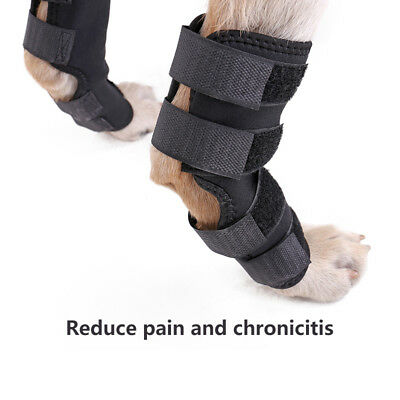 2Pcs/1 Pair Hock Knee Brace For Pet Dog ACL Therapeutic Hind Legs Protectors