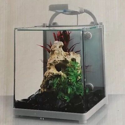 Love Fish Nano Cube Aquarium 13 Litre Curved Tank With Lights