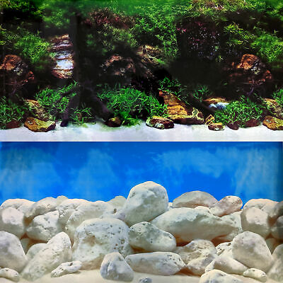 Aquarium Background Double-Sided Repeating Coral Seascape Plants Fresh Fish Tank