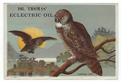 Dr. Thomas Eclectric Oil late 1800's medicine trade card - Canada Owl