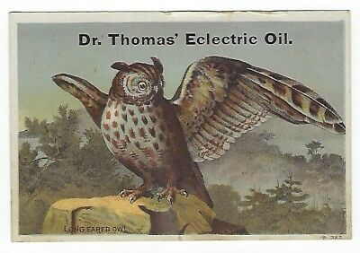 Dr. Thomas Eclectric Oil late 1800's medicine trade card- Long Eared Owl