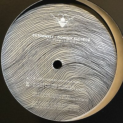Extrawelt / Dominik Eulberg, A Little Further, Vinyl