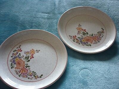 2 x DENBY 'SUMMER FIELDS'  SIDE /TEA PLATES COLLECTABLE GOOD CONDITION