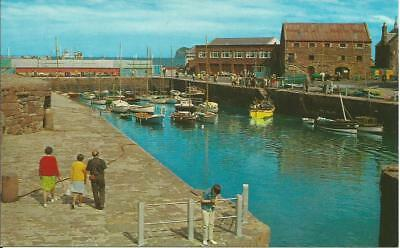 Printed postcard-THE HARBOUR, NORTH BERWICK-small boat