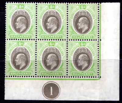 SOUTHERN NIGERIA  KEVII  1/2d *** M N H *** PLATE BLOCK