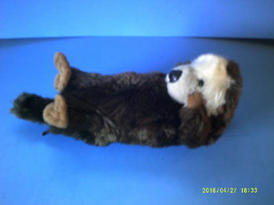 Plush Little Sea Otter Floating on Its Back