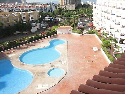 Holiday studio Apartment to rent in tenerife / Los Cristianos