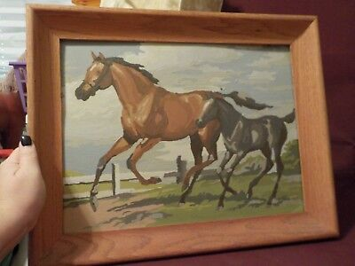 Vintage Finished Framed Paint By Number Picture Of Mother Horse And Colt