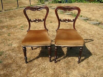 A Pair of Carved Mahogany Victorian Balloon Back Dining Chairs