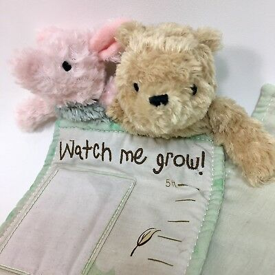 Disney Classic Winnie Pooh Piglet Watch Me Grow Milestone Marker 5F Pictures