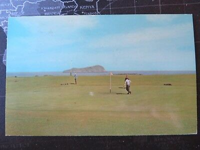 Fidra Island from the Golf Course, North Berwick.  Postcard 1976