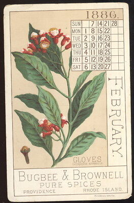Large 1886 Calendar Trade Card, Bugbee & Brownell Pure Spices, Providence, R.i.