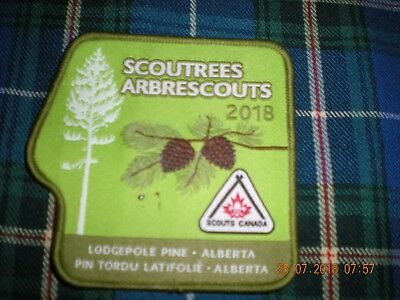 """DR 28  boy scouts Canada """" Scoutrees 2018"""" badge patch"""