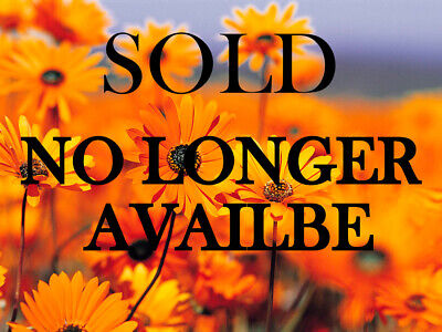 Extraordinary Grouping of 281 Super Fine Authentic Gem Grade Points Arrowheads
