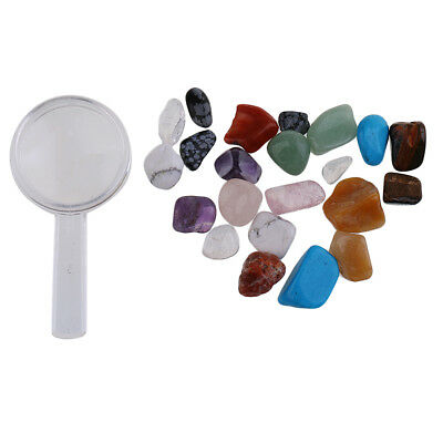 Mix Gems Crystals Natural Specimens Ore with Storage Box for School Teaching