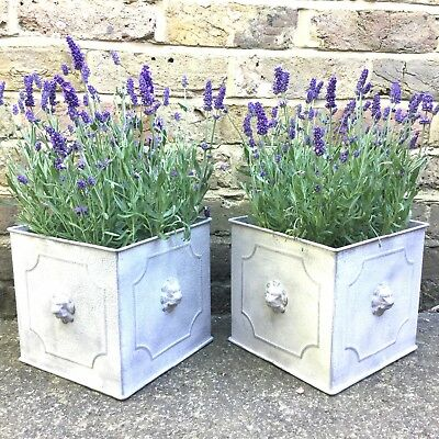 SET of 2 Vintage Style Metal Garden Planters Tubs Flower Pots Square Pot Holders