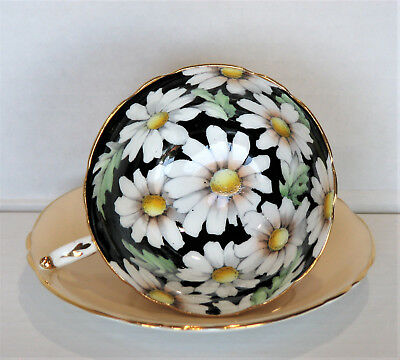 Paragon Daisy Cup & Saucer Set – Daisies On Black Background – Made In England