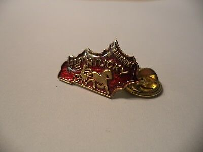 P79 Vintage Enamel Kentucky State Shaped Hat Suit Pin Tie Tac Free Comb Ship
