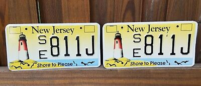 New Jersey License Plate Pair, Shore to Please, Lighthouse & Birds, SE 811J