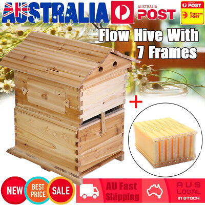 Wooden Beekeeping Beehive Brood House Box + 7pcs Auto Flow Honey Frames Hive Set