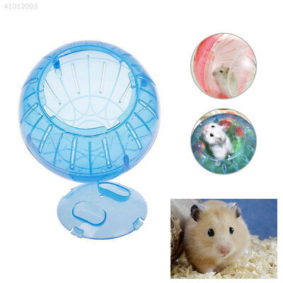 14A8 New Cute Plastic Pet Mice Gerbil Hamster Jogging Playing Exercise Ball