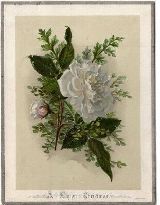 1800's Victorian Card - A Happy Christmas - H M Burnside - Selling Lot Of Cards