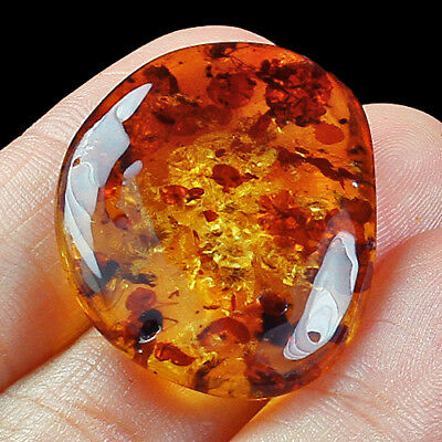 40.27g FLASHING FLOWER Amber Baltic Inclusion Collectible Natural FYc695