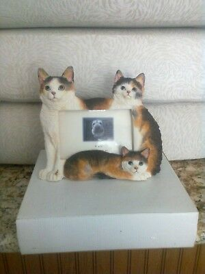 Calico Cat Cats 4 x 6 Picture Frame Clearance