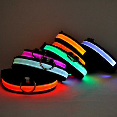 USB Rechargeable LED Luminous Dog Pet Collar Safety Night Light Nylon Adjustable