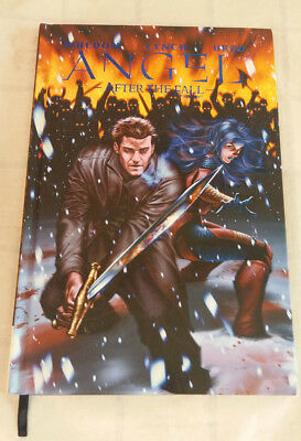 Angel After The Fall Vol 3 Idw Publishing Hardcover Graphic Novel Whedon & Lynch