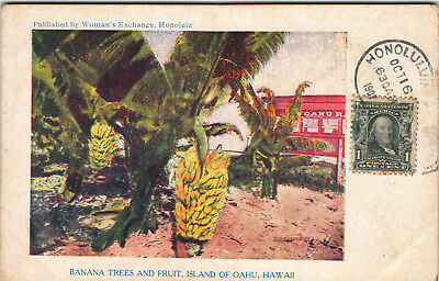 #1 of 2 Women's Exchnage Colorful Litho Postcard Oahu Railiroad Bkgrd Hawaii