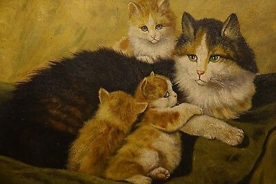 Very Beautiful Oil On Board Cat Painting - Amazing Quality - Very Rare - L@@k