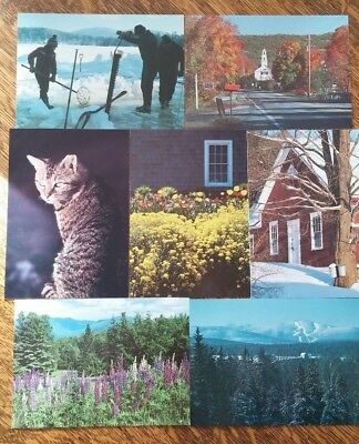 250 Postcards Post cards FL NH Florida New Hampshire Mt Sunapee Franconia !!!!!!