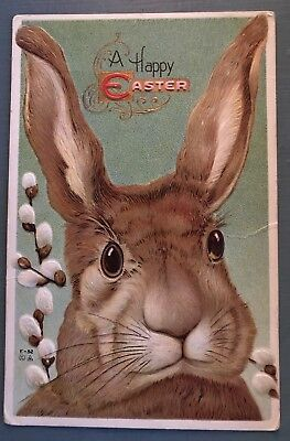 ~Stunning~BIG BUNNY RABBIT with  Pussywillow Flowers Antique Easter Postcard-g62