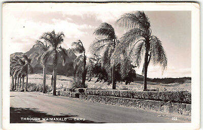""" Walt's "" Waimanalo / MT. Olomana Postcard Goes w Hawaii USO Group Real Photo"