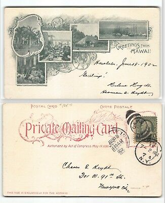 1902 Greetings from Hawaii Private Mailing Postal Card -Famous Early Scenes Post