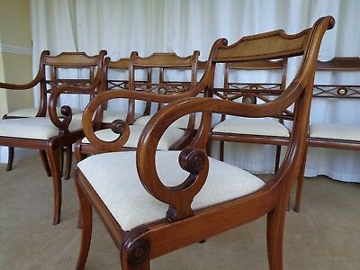 8 Vintage Antique Style Mahogany Dining Chairs / Regency Style Chairs