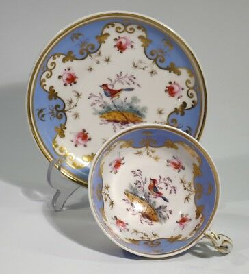 Fine Handpainted & Gilded Victorian Antique China Cup & Saucer - Bird & Foliage.