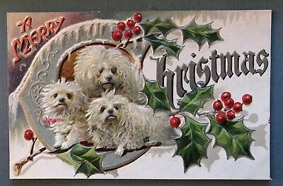 ~Cute White Fluffy Dogs & Holly~Vintage Christmas Dog Puppies  Postcard-s-7