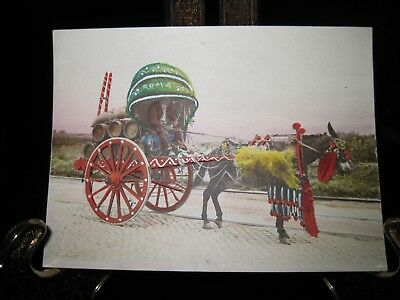 Antique Hand Colored Mule & cart - Roma - Italy