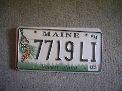 Maine Pinecone       License Plate    Buy All States Here