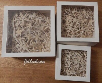 3 Boxes of Small Starfish 1.5cms - 5cms Craft/Weddings/Decor/Scrapbooking